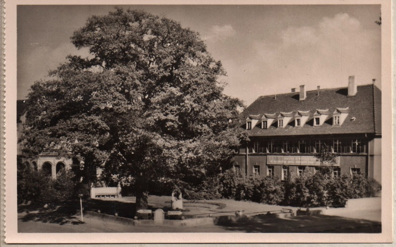 vintage Postcard from 1960: Lutherstadt Wittenberg:: Lutherstadt Wittenberg